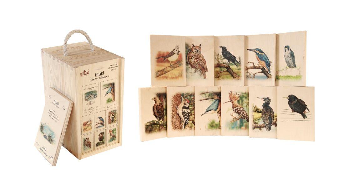 Edukacja ekologiczna i przyrodnicza – ABC przyrody - Ptaki naszych lasow