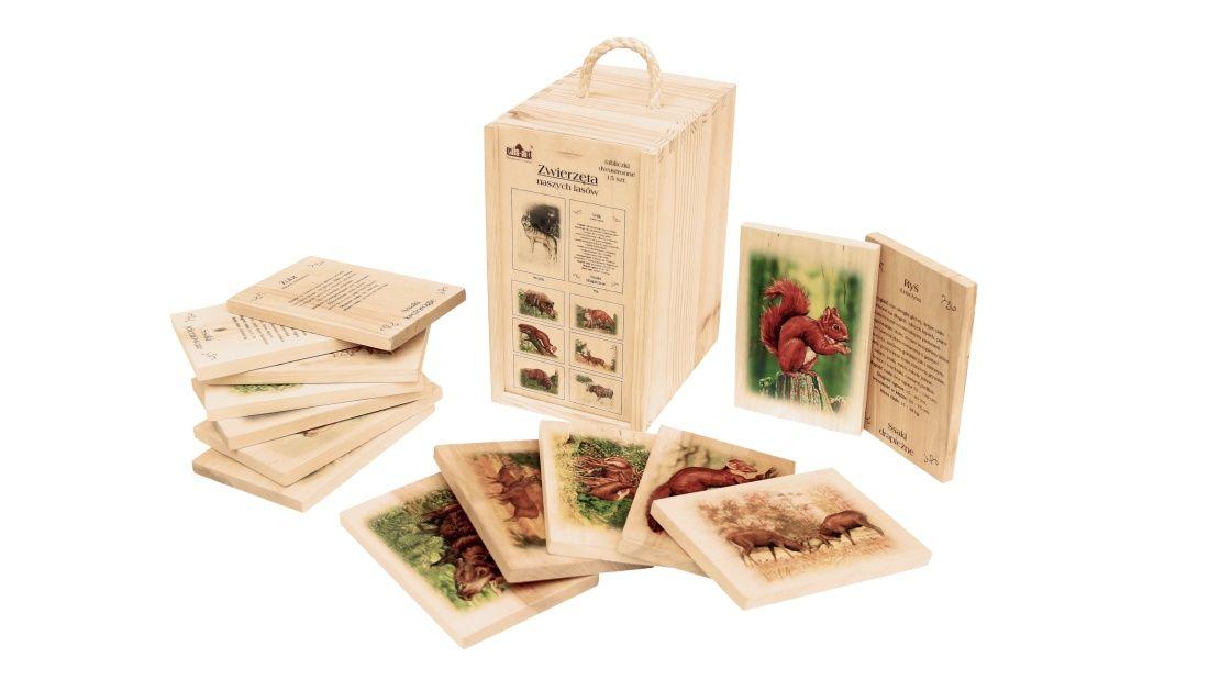 Edukacja ekologiczna i przyrodnicza – ABC przyrody - Zwierzeta naszych lasow