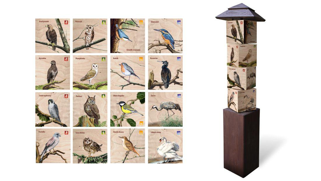 KW-3 - Gra edukacyjna kostki wiedzy - ptaki