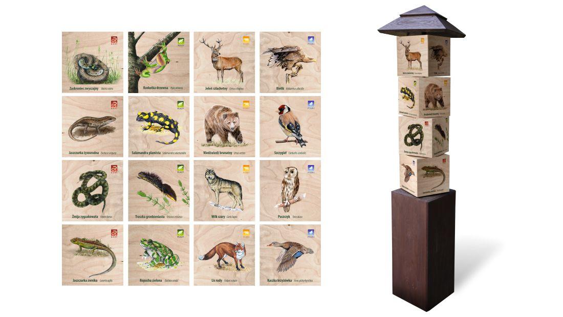 KW-7 - Gra edukacyjna kostki wiedzy - ssaki, ptaki, gady, plazy
