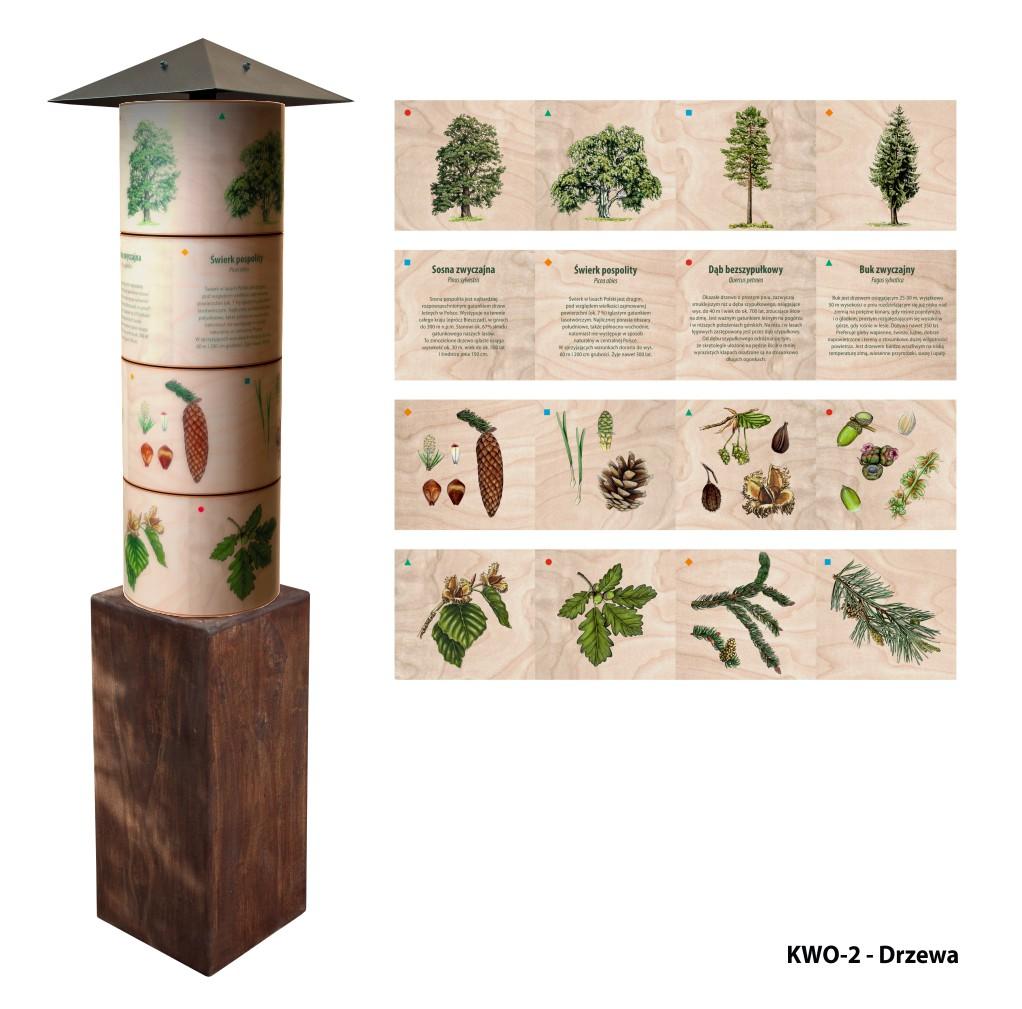 KWO-2 - Filary wiedzy - Drzewa