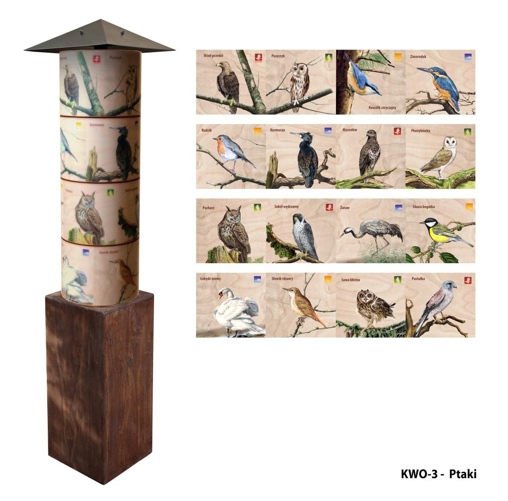 KWO-3 - Filary wiedzy - Ptaki