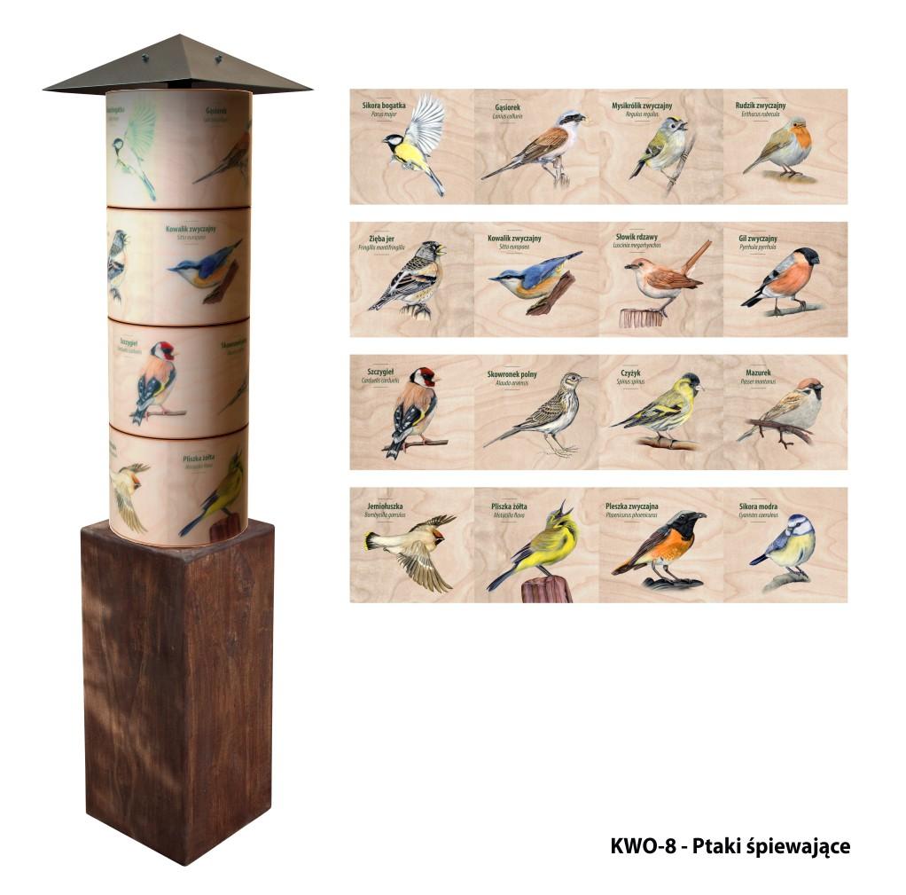KWO-8 - Filary wiedzy - Ptaki spiewajace