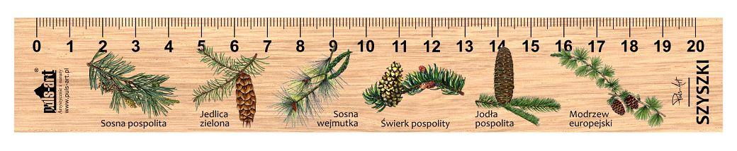 LES-28 - Szyszki (linijki drewniane)