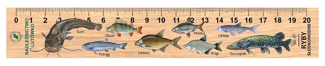 LES-31 - Ryby slodkowodne (linijka drewniana)