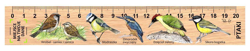 LES-54 -ptaki male 2 (linijka drewniana)