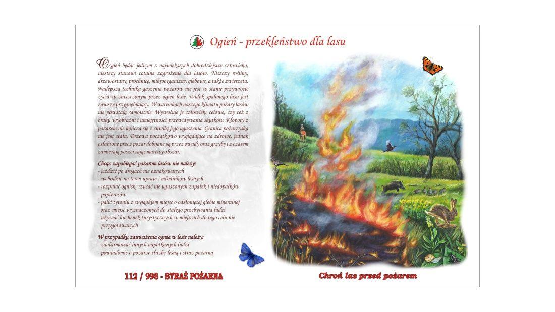 Plansze edukacyjne (TE-2) - Ogień