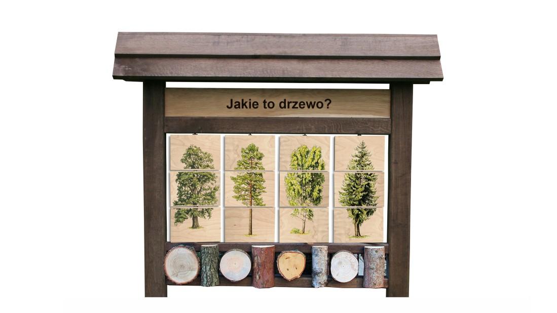 ZIDD-1 - Jakie to drzewo (4) - tablica interaktywna
