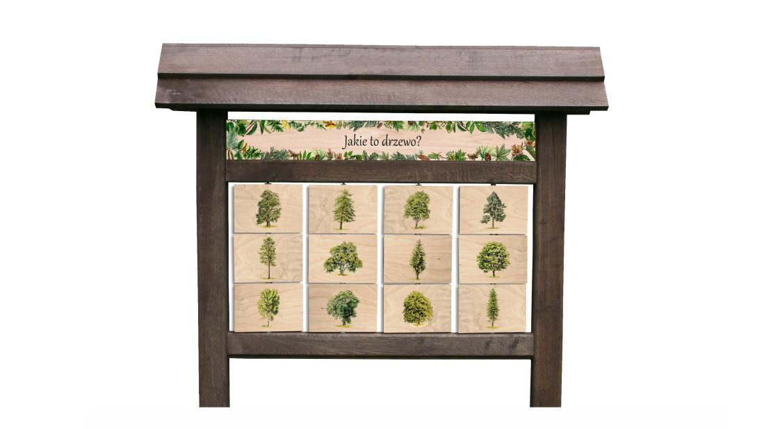 ZIDD-4 - Jakie to drzewo (12) - tablica interaktywna