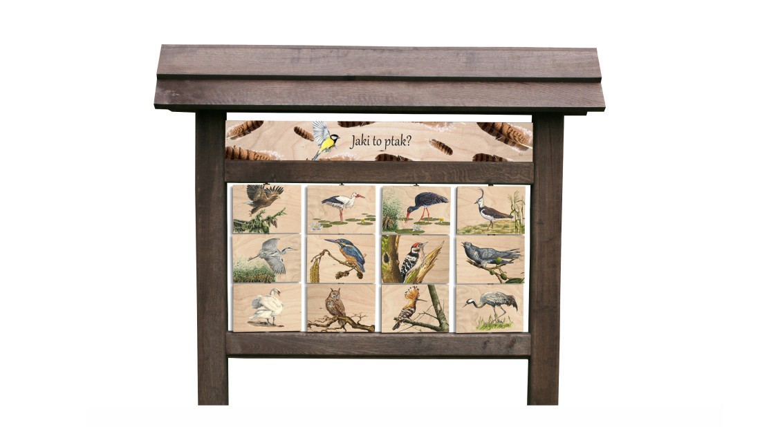 ZIDD-5 - Jaki to ptak (tablica interaktywna)
