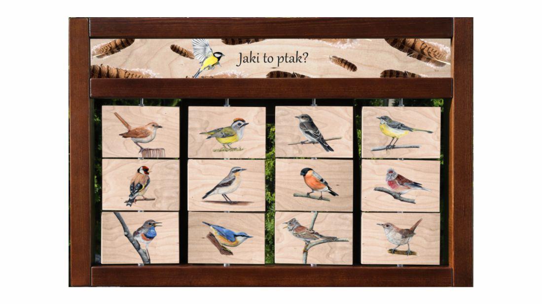 ZIDM-27 - Zestaw interaktywny - Jaki to ptak