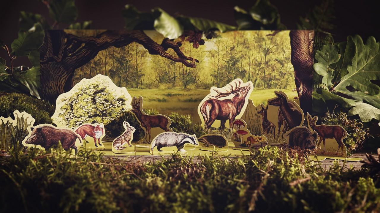 Edukacja leśna - zwierzęta na makiecie