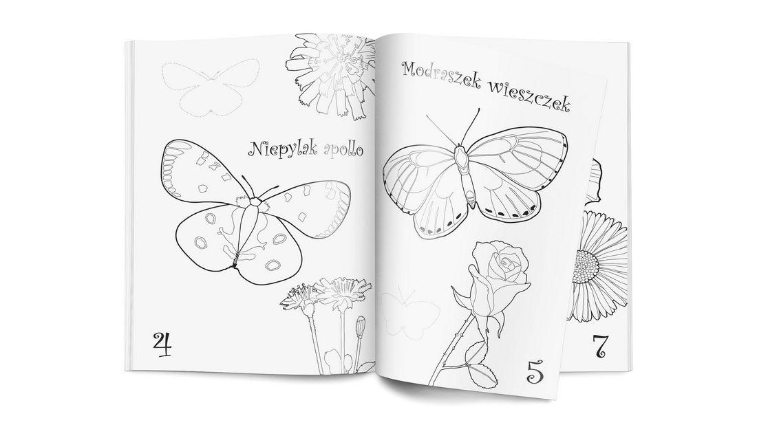 Kolorowanka - Motyle