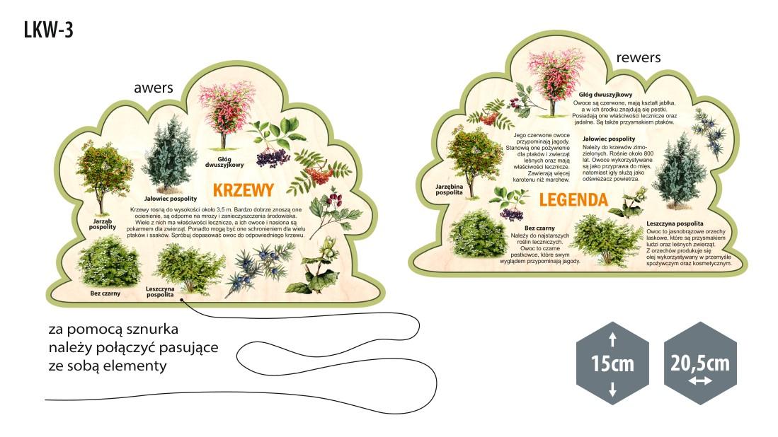 Leśne kształty wiedzy - pomoce edukacyjne drewniane