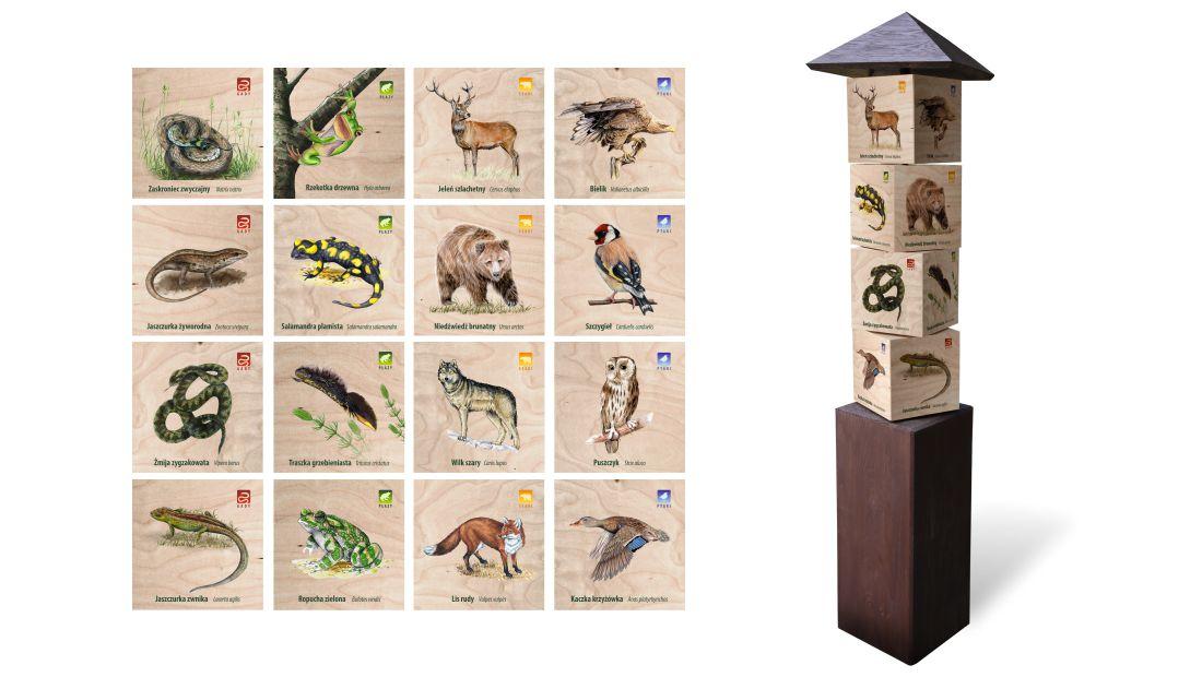 KWm-7 - Gra edukacyjna kostki wiedzy - ssaki, ptaki, gady, plazy