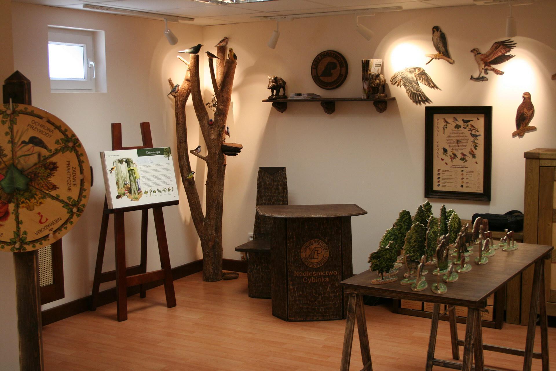 Izby edukacyjne lesne - sale przyrodnicze, wystroj wnetrz - Nadlesnictwo Cybinka (2)