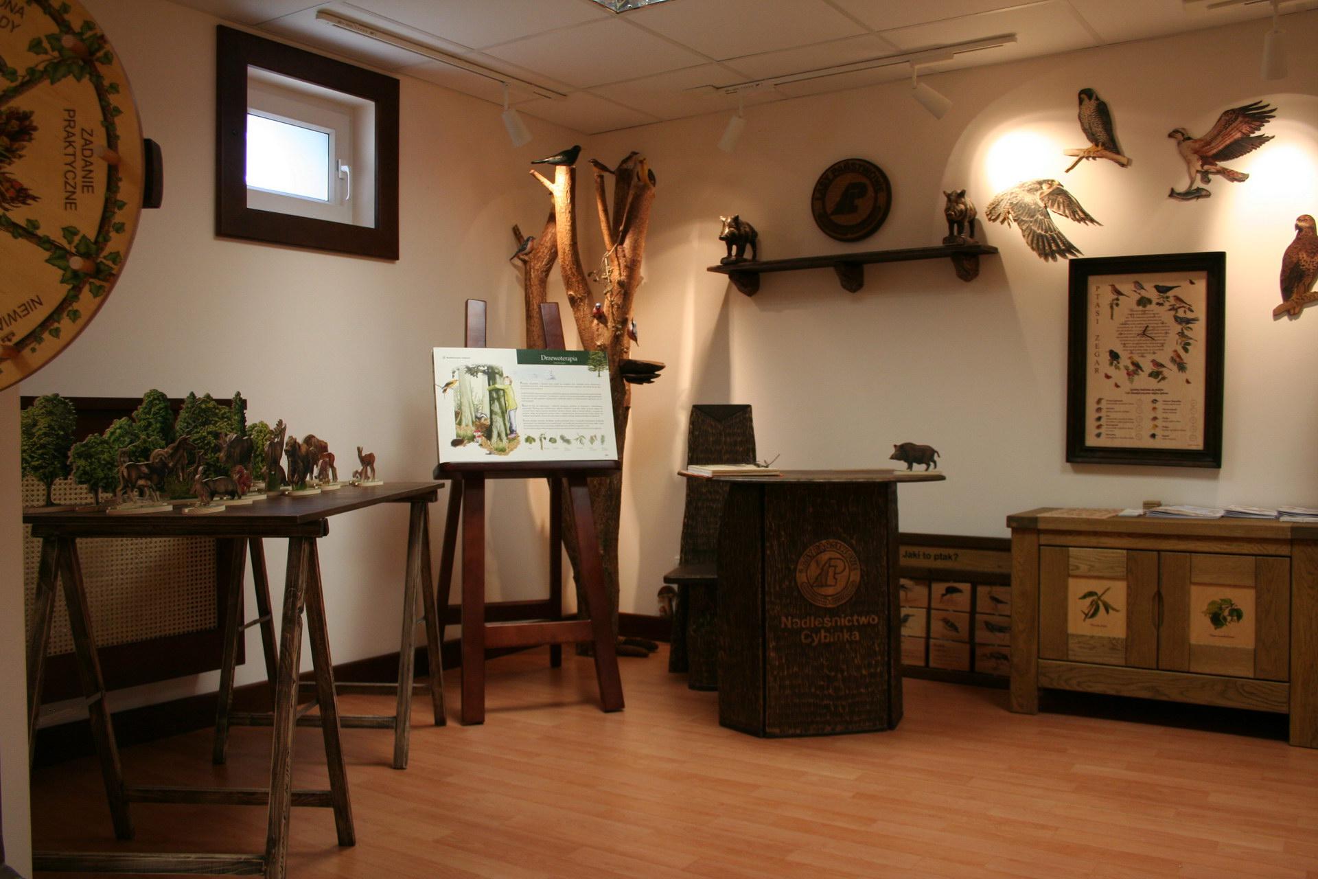 Izby edukacyjne lesne - sale przyrodnicze, wystroj wnetrz - Nadlesnictwo Cybinka (6)