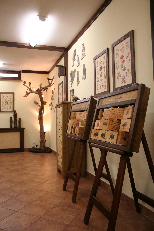Izby edukacyjne lesne - sale przyrodnicze, wystroj wnetrz - Nadlesnictwo Sniezka (5)