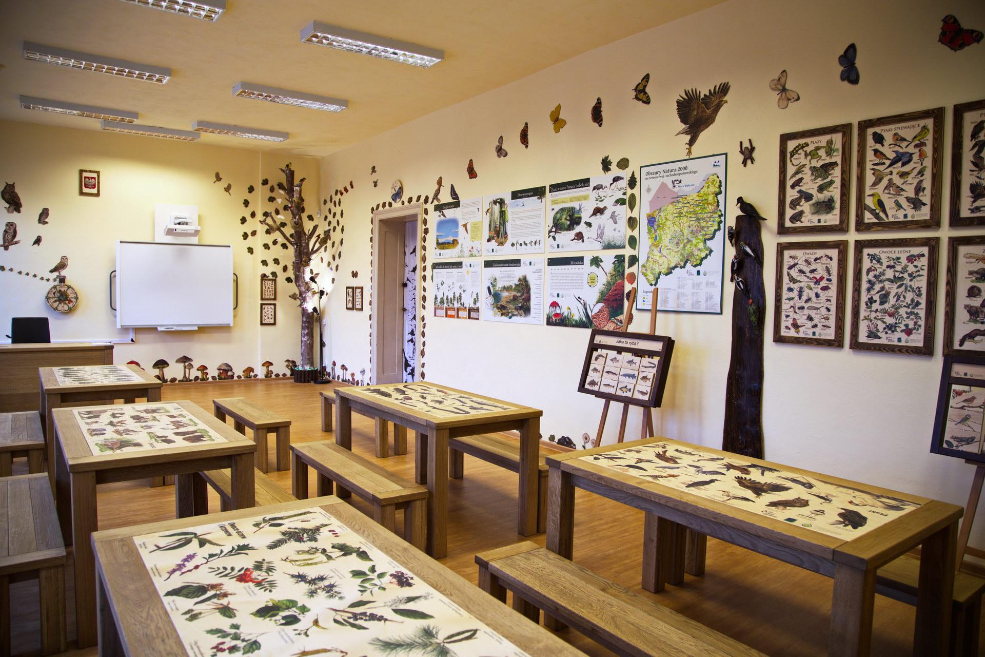 Izby edukacyjne lesne - sale przyrodnicze, wystroj wnetrz - PSP nr 1 w Polczynie Zdroju (1)