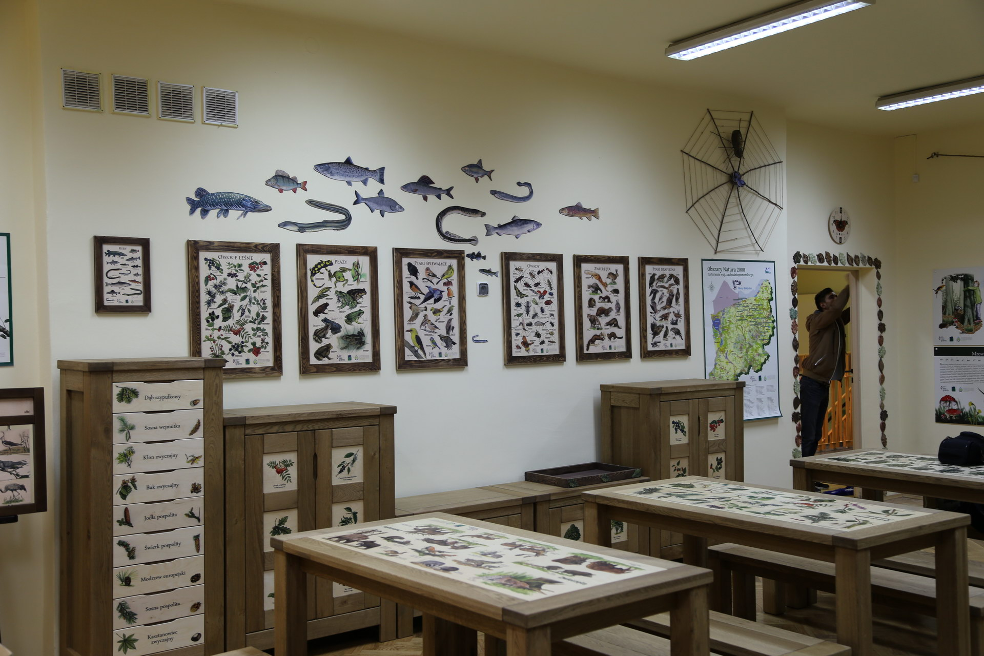 Izby edukacyjne lesne - sale przyrodnicze, wystroj wnetrz - SP nr 4 w Kolobrzegu (1)