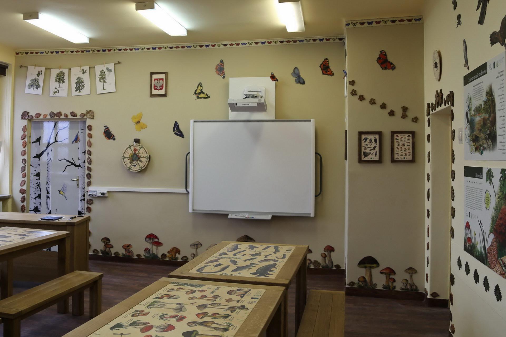 Izby edukacyjne lesne - sale przyrodnicze, wystroj wnetrz - SP w Barwicach (1)
