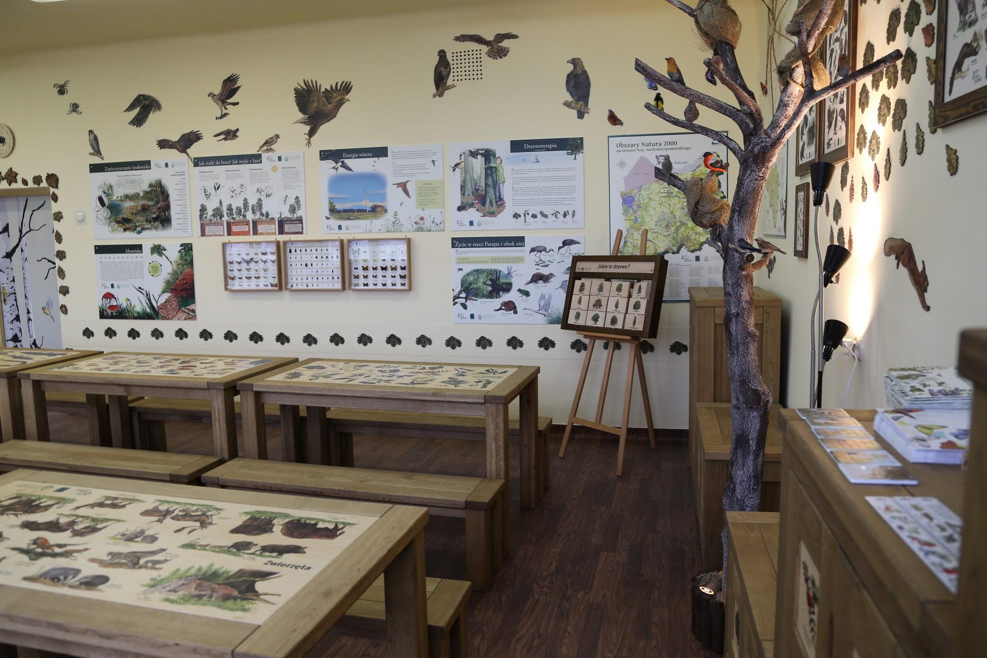 Izby edukacyjne lesne - sale przyrodnicze, wystroj wnetrz - SP w Barwicach (3)
