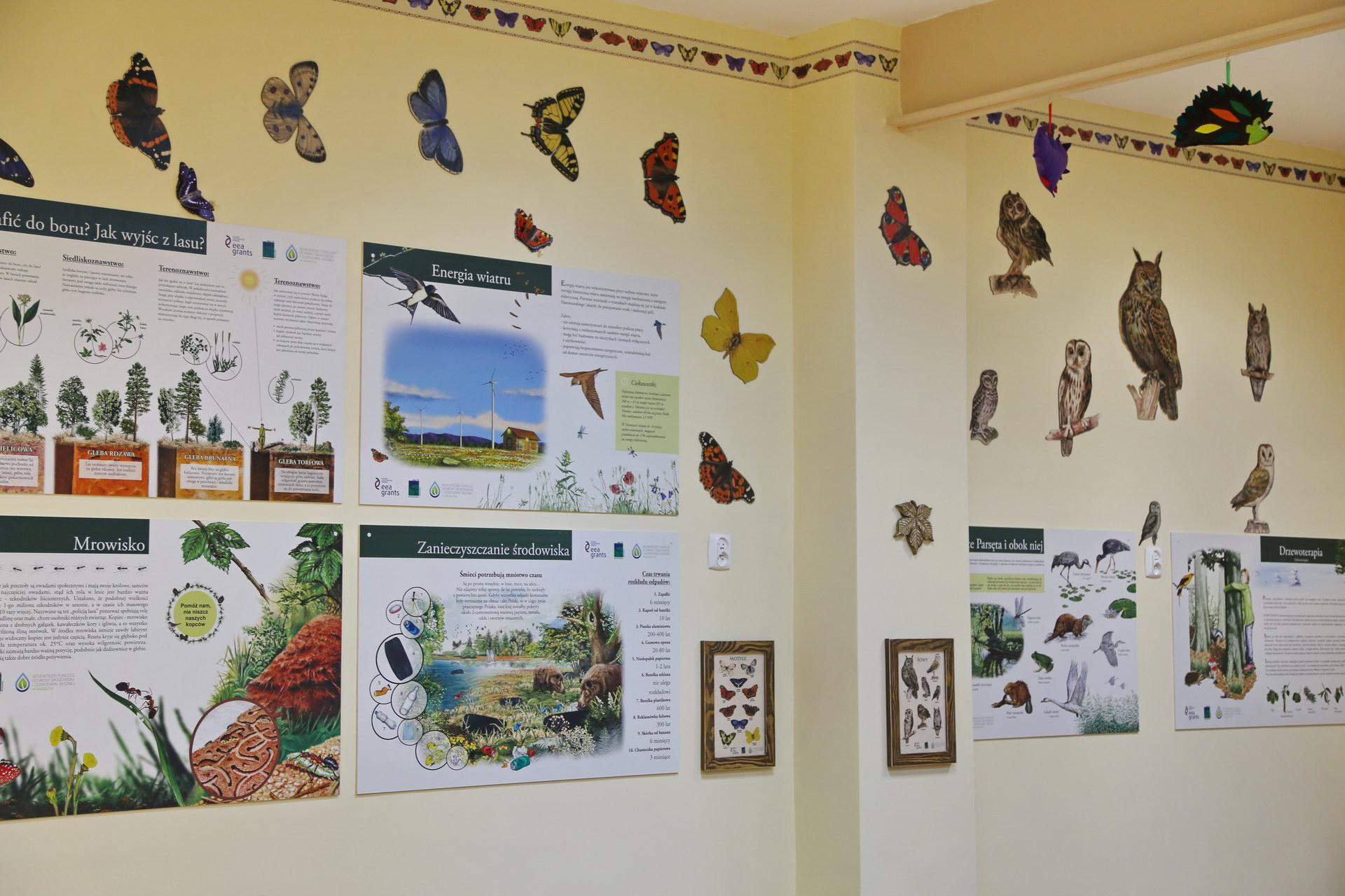 Izby edukacyjne lesne - sale przyrodnicze, wystroj wnetrz - SP w Biesiekierzu (1)