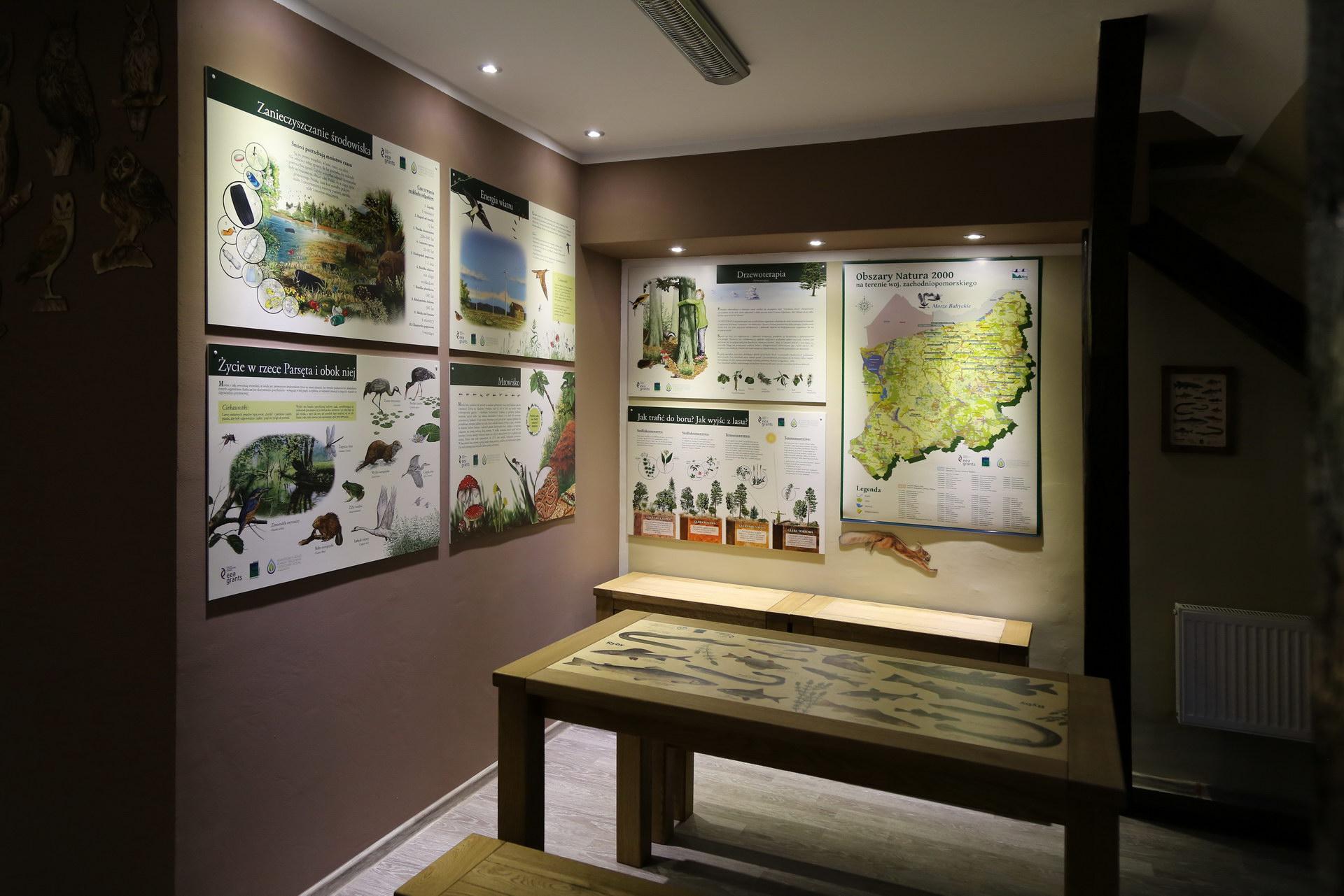 Izby edukacyjne lesne - sale przyrodnicze, wystroj wnetrz - SP w Bornem Sulinowie (3)