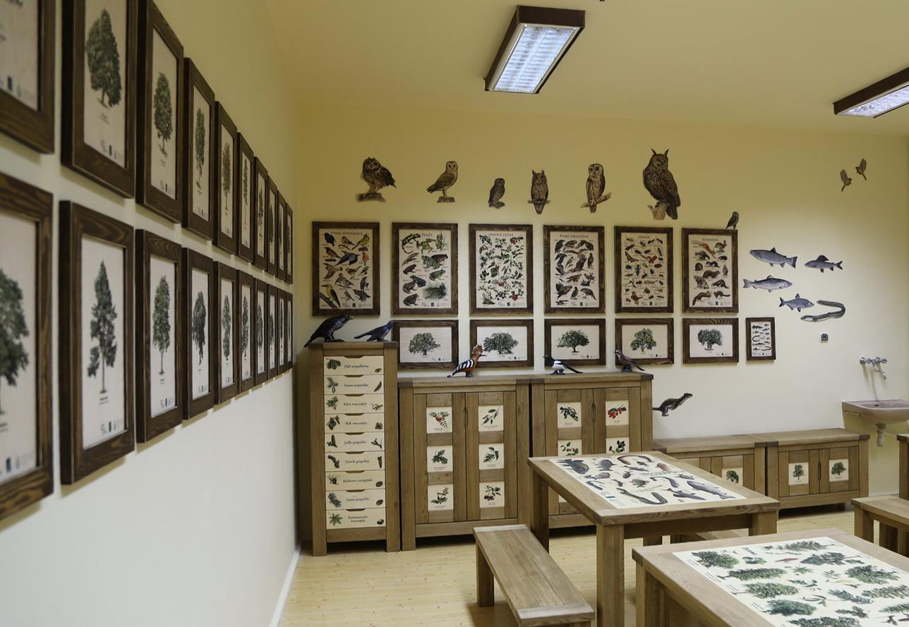 Izby edukacyjne lesne - sale przyrodnicze, wystroj wnetrz - SP w Karlinie (1)