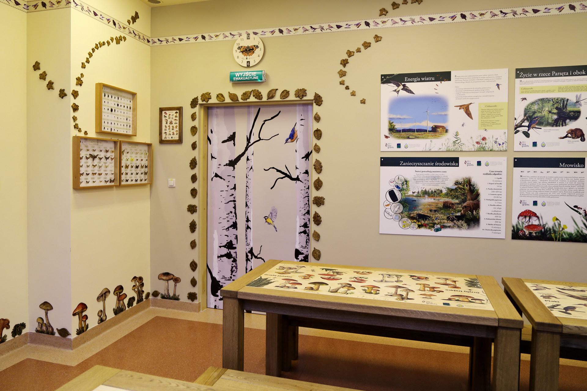 Izby edukacyjne lesne - sale przyrodnicze, wystroj wnetrz - SP w Rabinie (1)
