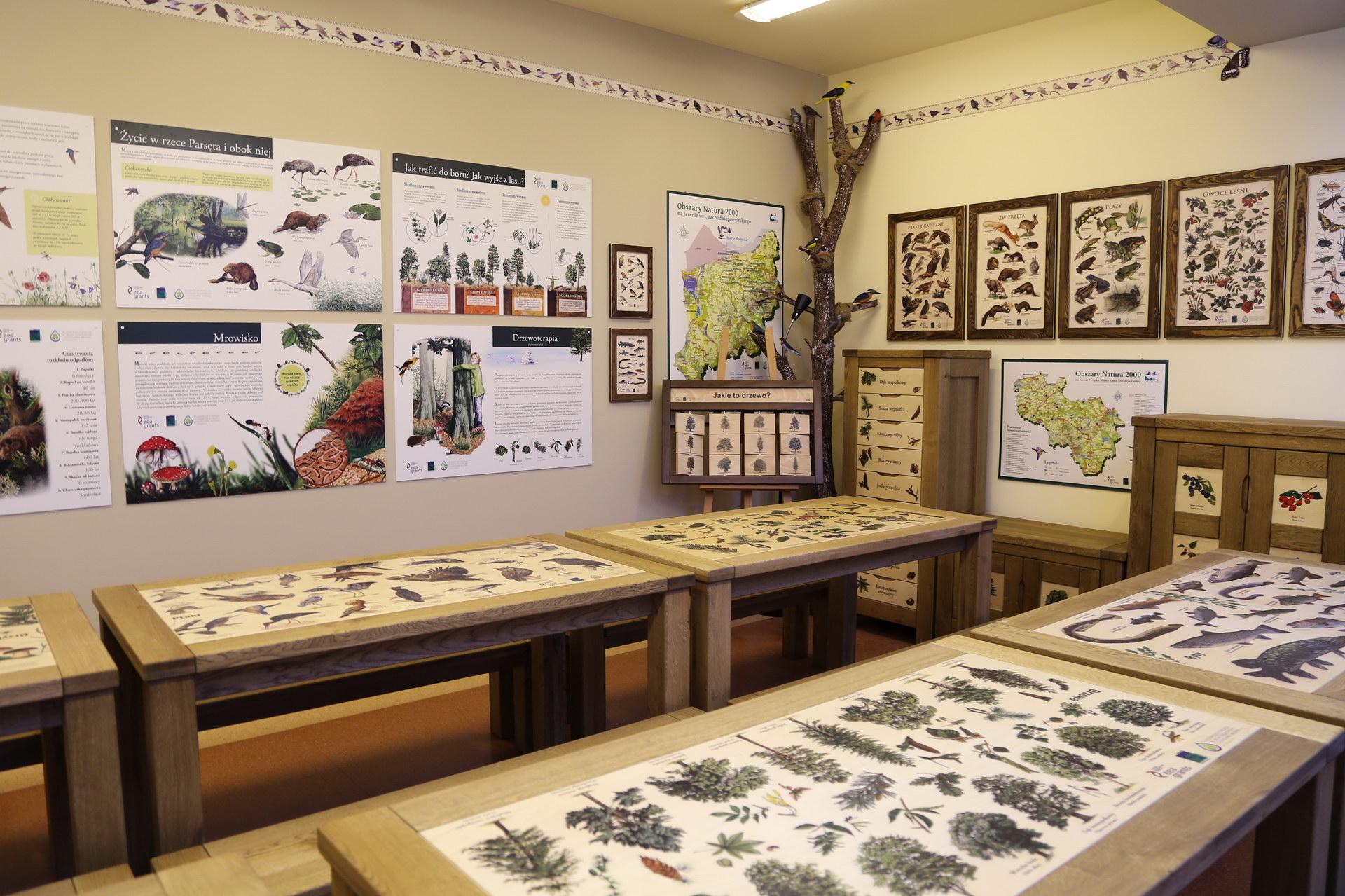 Izby edukacyjne lesne - sale przyrodnicze, wystroj wnetrz - SP w Rabinie (2)