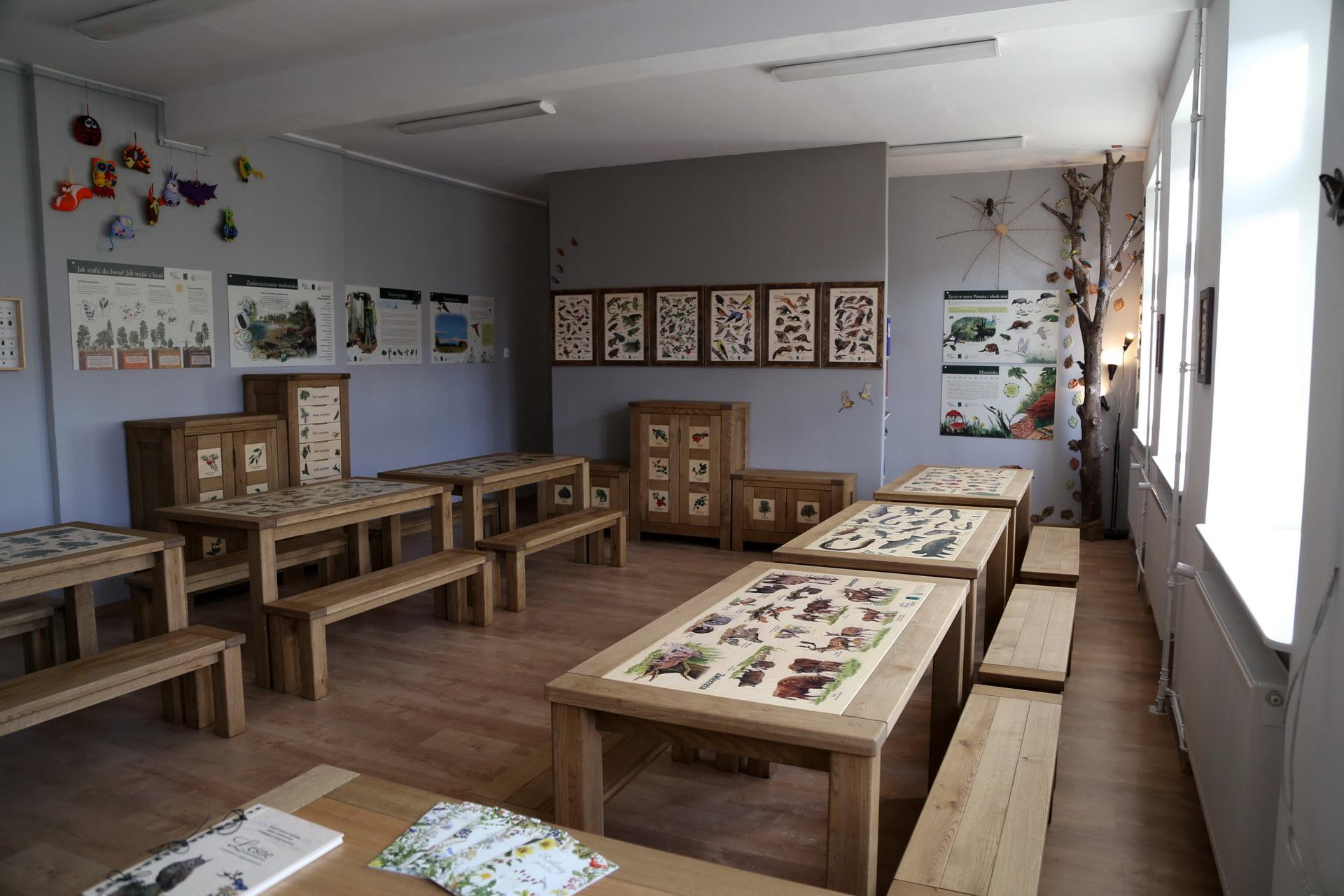 Izby edukacyjne lesne - sale przyrodnicze, wystroj wnetrz - ZS Goscino (2)