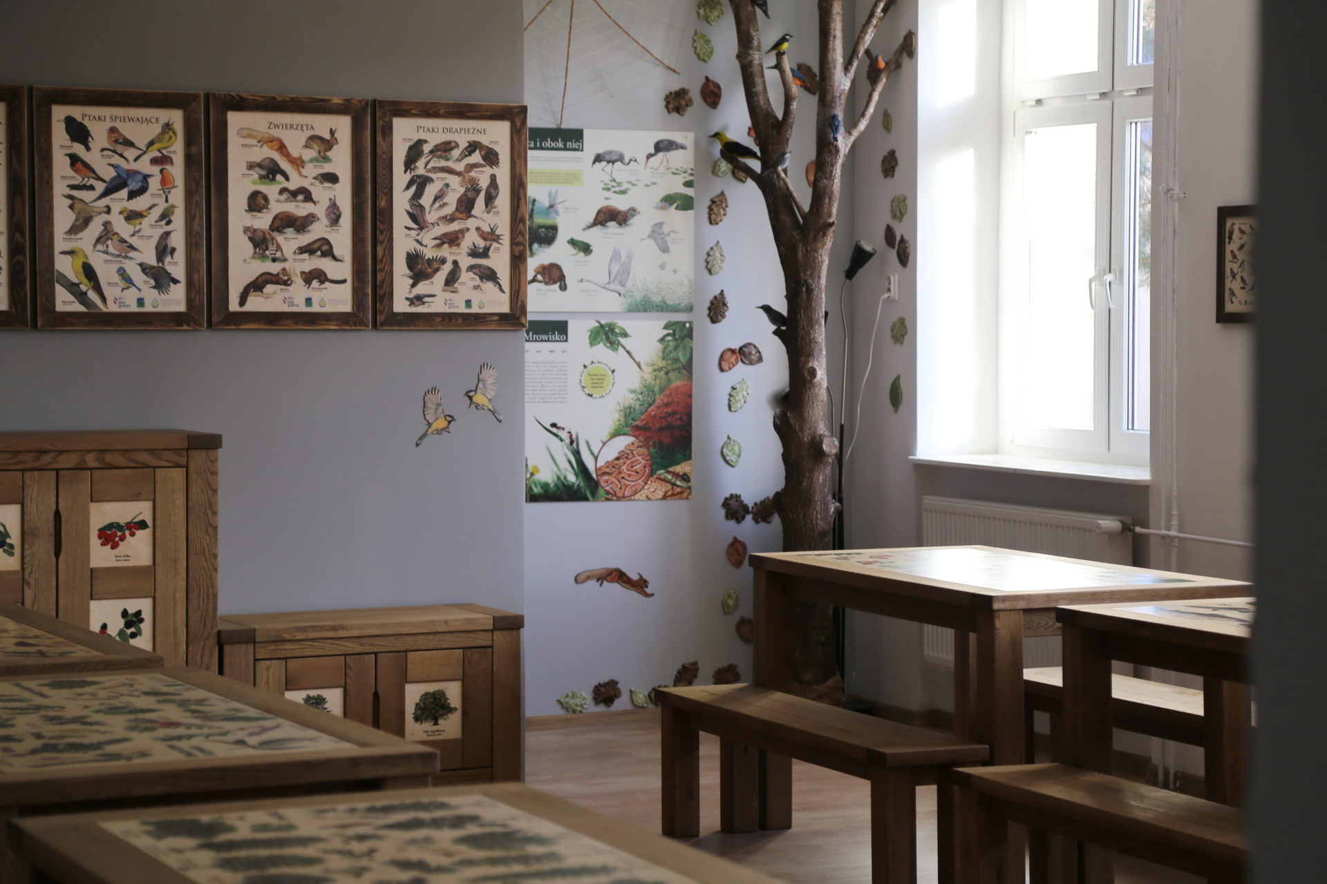 Izby edukacyjne lesne - sale przyrodnicze, wystroj wnetrz - ZS Goscino (3)