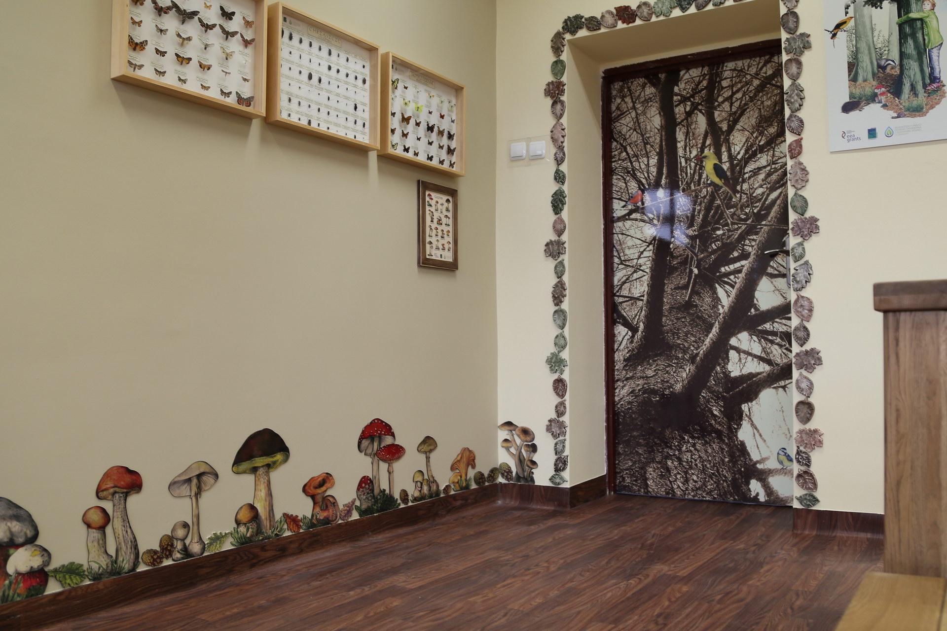 Izby edukacyjne lesne - sale przyrodnicze, wystroj wnetrz - ZS Grzmiaca (1)