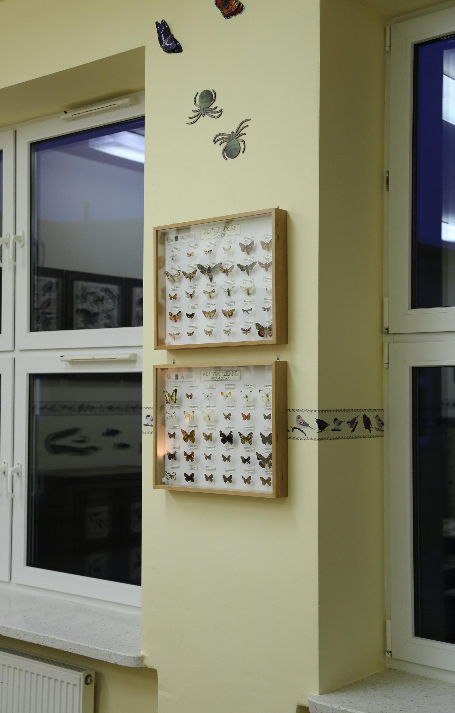 Izby edukacyjne lesne - sale przyrodnicze, wystroj wnetrz - ZS w Drzonowie (1)