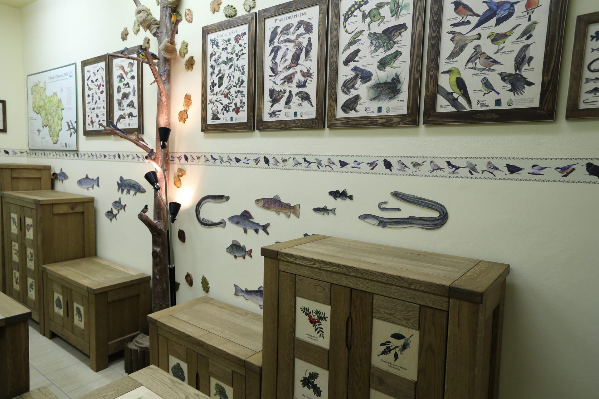 Izby edukacyjne lesne - sale przyrodnicze, wystroj wnetrz - ZS w Drzonowie (2)
