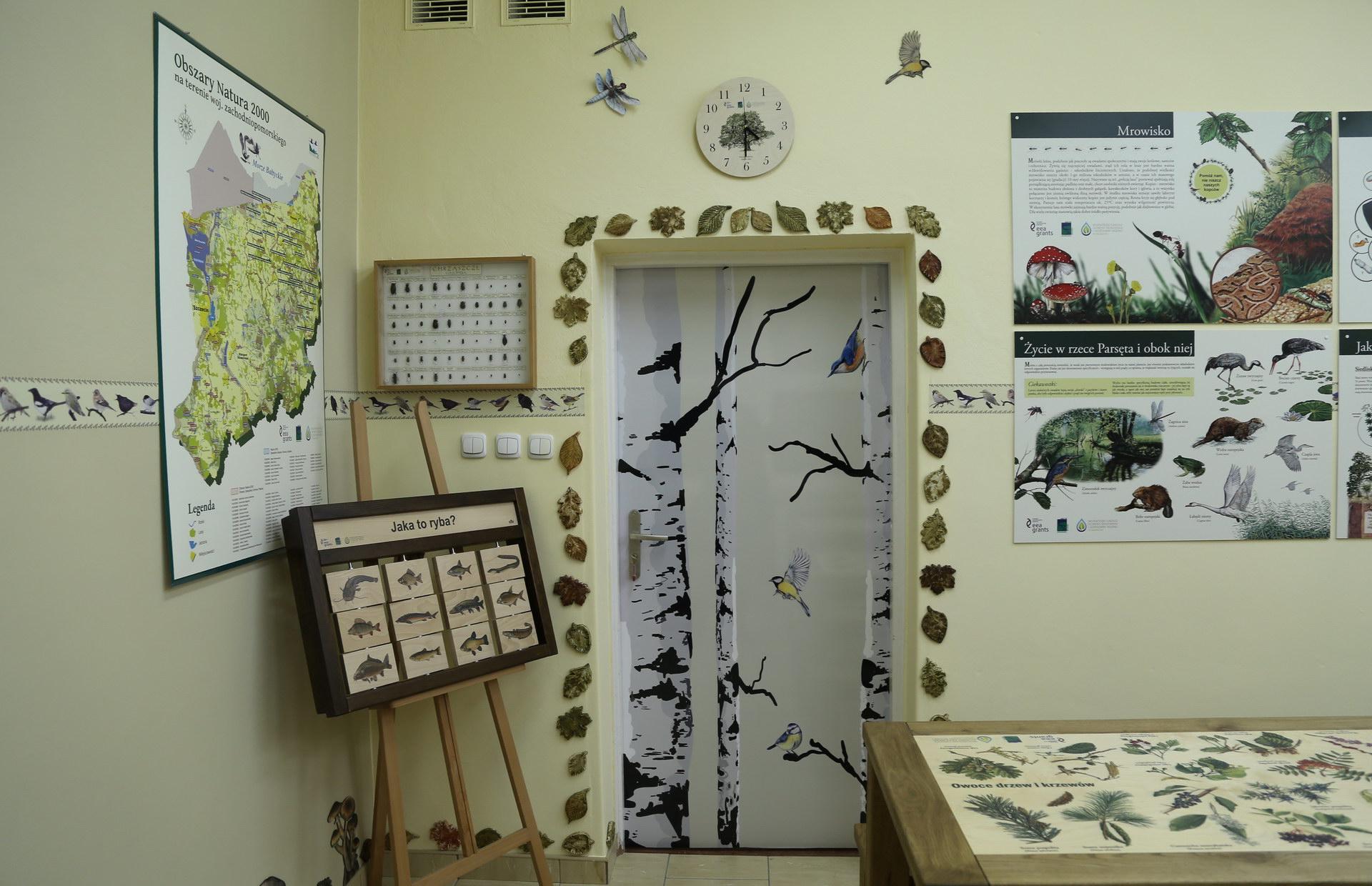 Izby edukacyjne lesne - sale przyrodnicze, wystroj wnetrz - ZS w Drzonowie (3)