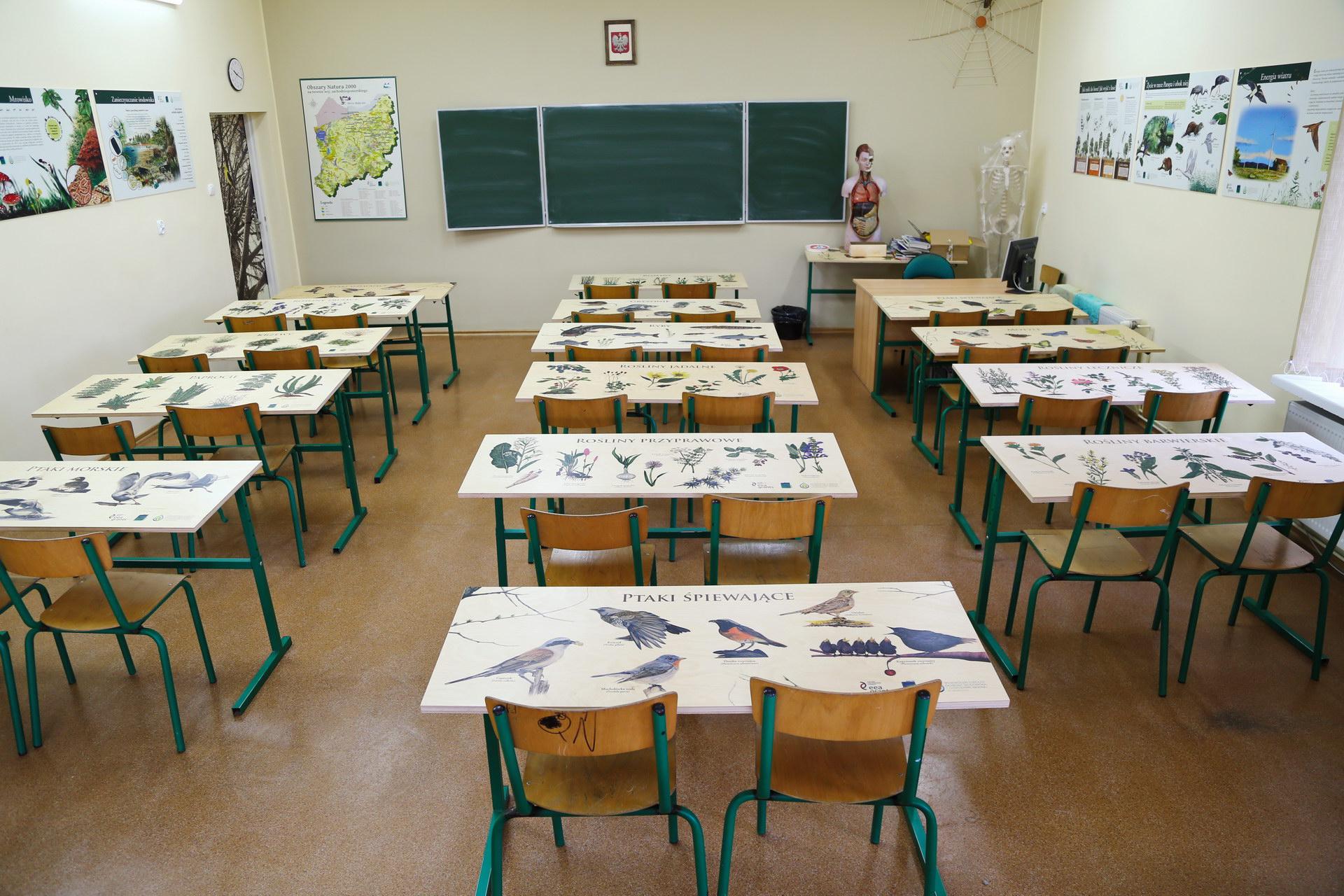 Izby edukacyjne lesne - sale przyrodnicze, wystroj wnetrz - ZS w Siemyslu (1)