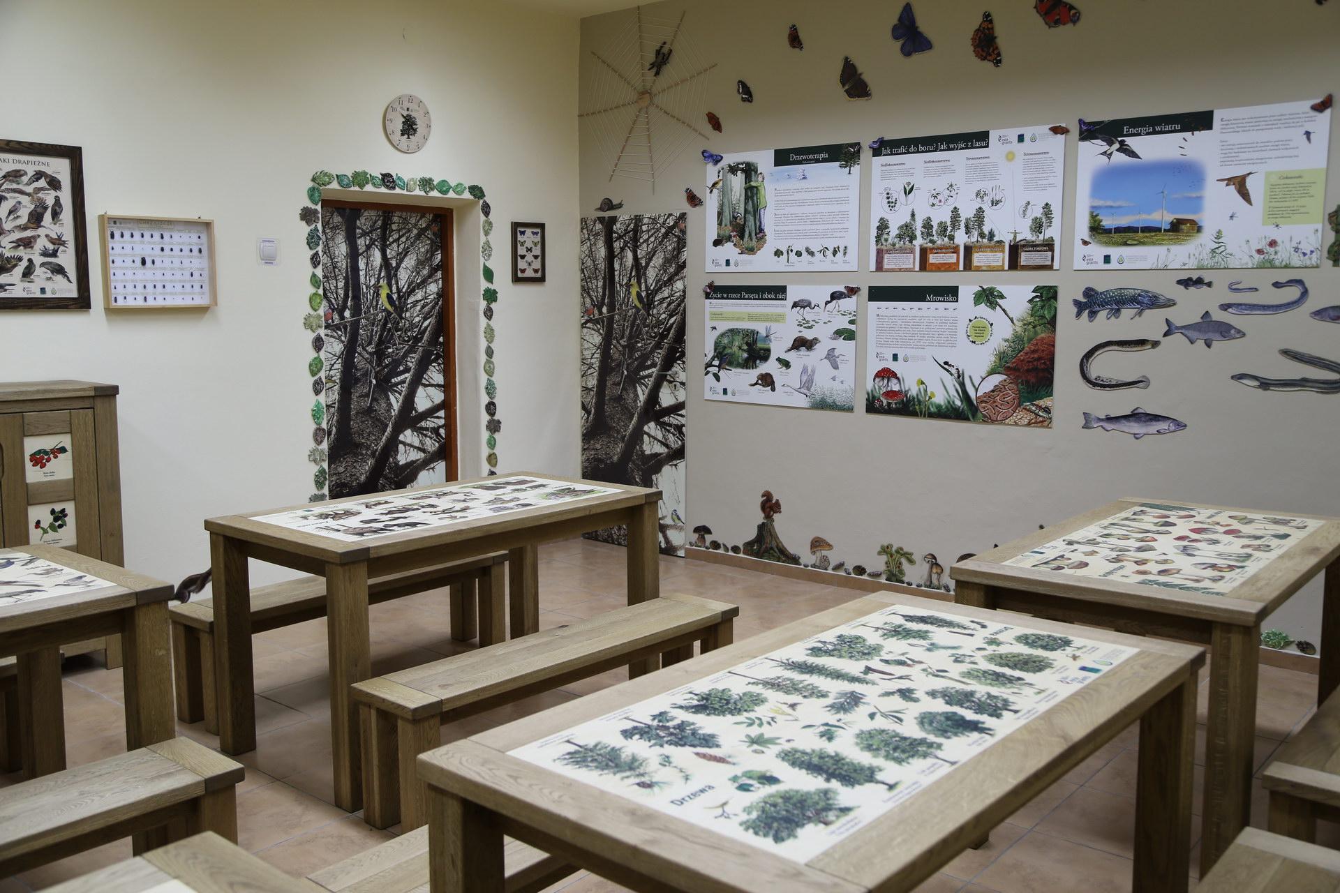 Izby edukacyjne lesne - sale przyrodnicze, wystroj wnetrz - ZS w Ustroniu Morskim (1)