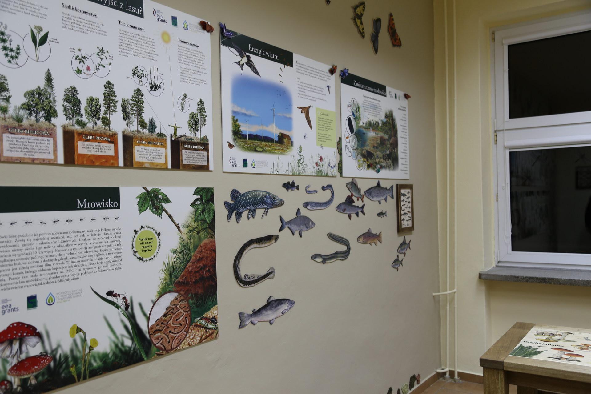 Izby edukacyjne lesne - sale przyrodnicze, wystroj wnetrz - ZS w Ustroniu Morskim (4)