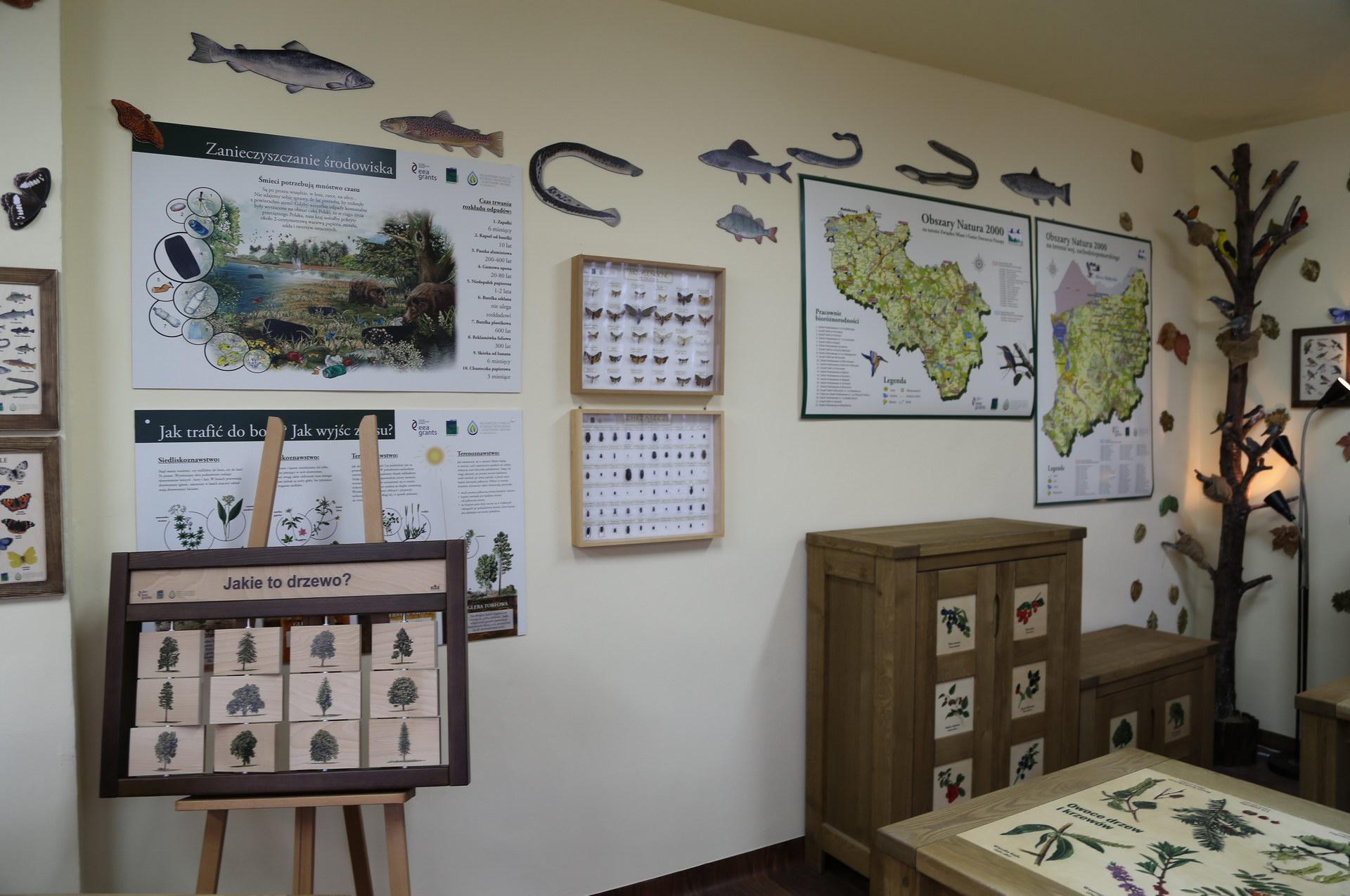 Izby edukacyjne lesne - sale przyrodnicze, wystroj wnetrz - ZS we Wrzosowie (1)