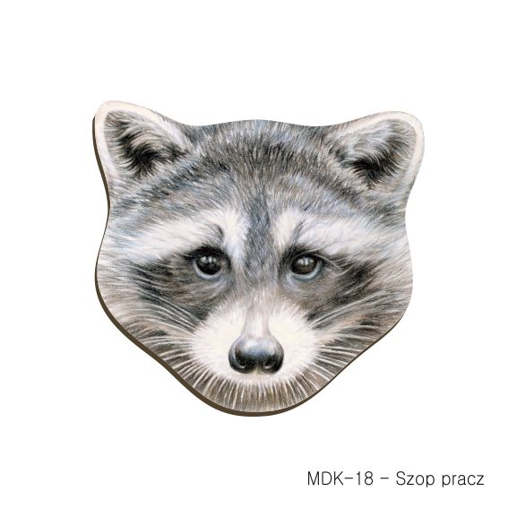 MDK-18 - Szop pracz (magnesy drewniane ksztalty).jpg