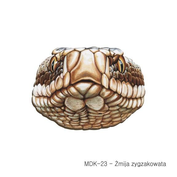 MDK-23 - Zmija zygzakowata (magnesy drewniane ksztalty).jpg