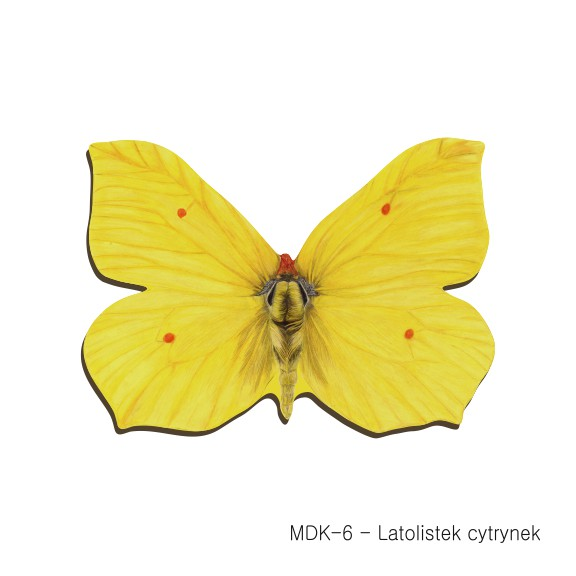 MDK-6 - Latolistek cytrynek (magnesy drewniane ksztalty)