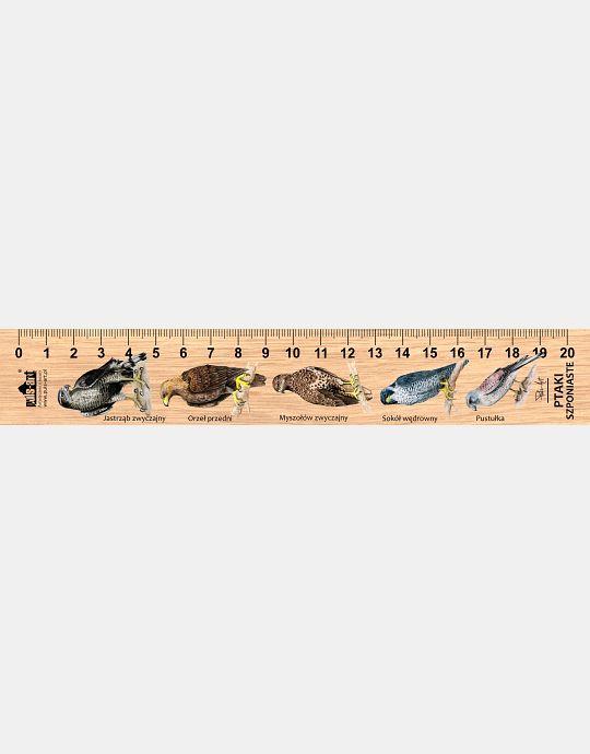 LESs-1 - ptaki drapieżne (linijka drewniana)