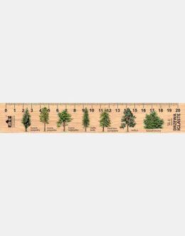 LESs-12 - drzewa iglaste (linijka drewniana)