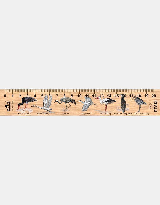LESs-32 - Ptaki (linijka drewniana)