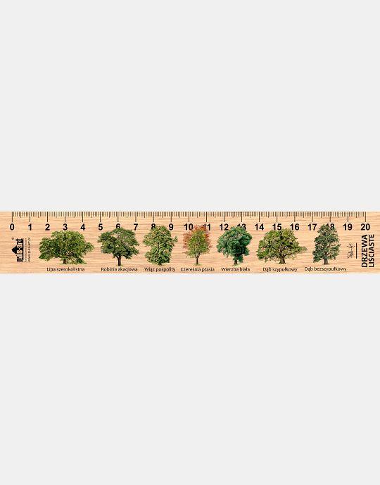 LESs-46 - Drzewa (linijka drewniana)