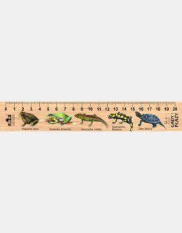 LESs-5 - gady i plazy (linijka drewniana)
