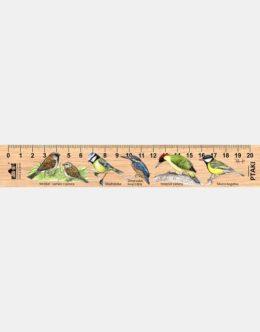LESs-54 - ptaki male 2 (linijka drewniana)